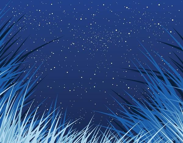 Besøg fra stjernerne